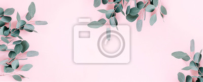 Poster Eucalyptus leaves and branches on pastel pink background. Eucalyptus branches pattern. Flat lay, top view, copy space, banner