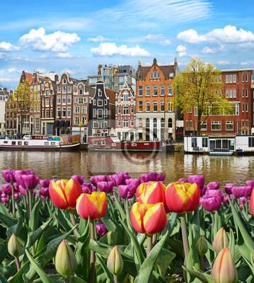 Fabelhafte, unglaublich schöne magische Landschaft mit einem Fluss und Tulpen in Amsterdam, Holland, Europa.