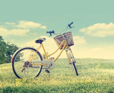 Poster Fahrrad auf der weißen Blume Feld und Gras in der Sonne die Natur Hintergrund