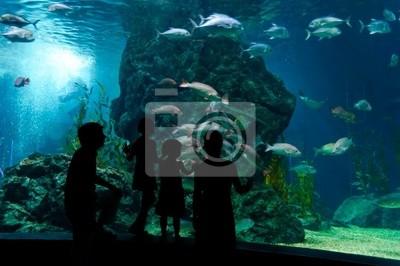 Familie mit zwei Kinder im Ozeanarium