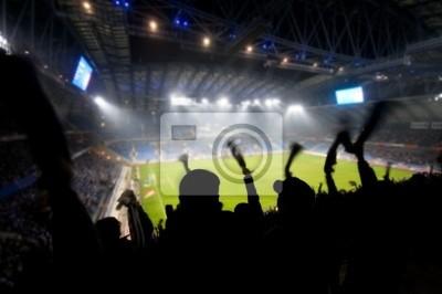 Fans feiern ein Ziel auf Fußball / Fußballspiel