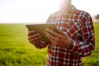 Poster Farmer with a  digital tablet in his hands, checks the condition of young wheat in the field. Copy  space of the setting sun rays on horizon In rural meadow.  Rich Harvest.