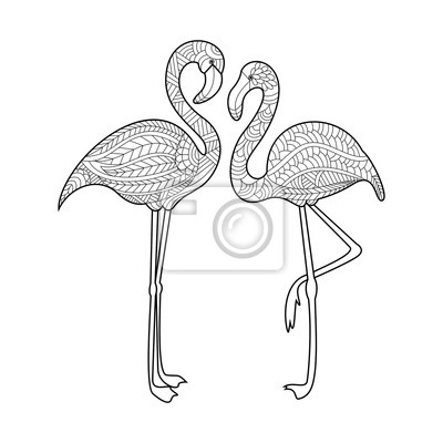 Flamingo Ausmalbilder Für Erwachsene Vektor Wandposter • Poster