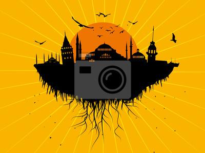 Fliegen Istanbul Silhouette