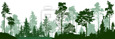 Poster Forest silhouette trees. Evergreen coniferous forest with pines, fir trees,  christmas tree, cedar, Scotch fir. Vector illustration. (Every tree isolated, separate from each other, free-standing)