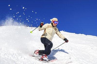 Poster Freude am Skifahren