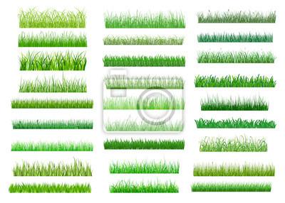 Poster Frische grüne Frühling Gras Grenzen