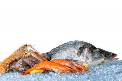 Poster Frische Meeresfrüchte isoliert auf weißem Hintergrund