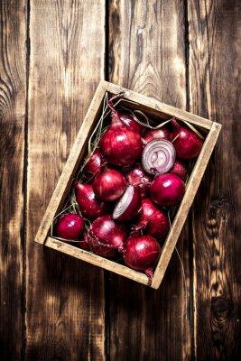 Poster Frische rote Zwiebel in einer alten Schachtel.