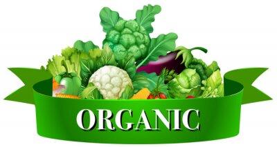 Poster Frisches Gemüse mit Banner