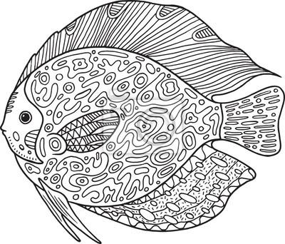 Gekritzel Zentangle Fisch Malvorlage Mit Tier Für Erwachsene