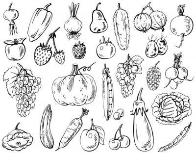 Poster Gemüse, Früchte und Beeren