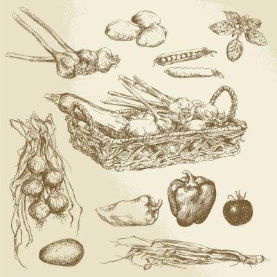 Poster Gemüse - Hand gezeichnete Sammlung