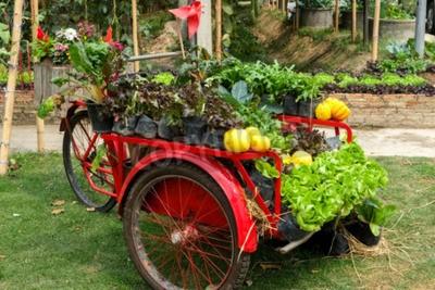 Gemüse In Dekorierten Vertikalen Garten Idee In Der Stadt Wandposter