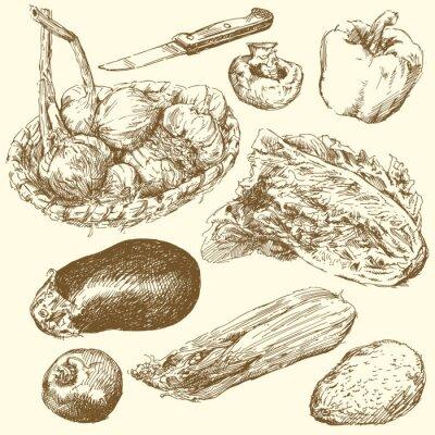 Poster Gemüseladen-der Hand gezeichnet