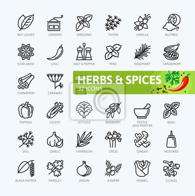 Gewürze, würzen und kräuter - minimale dünne linie web icon-set ...