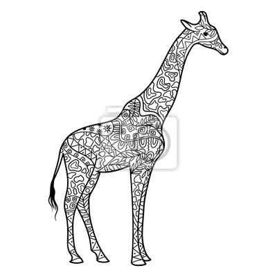 Giraffe Ausmalbilder Für Erwachsene Vektor Wandposter
