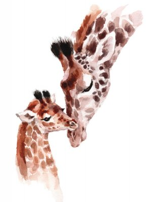 Poster Giraffes Mother and Baby Watercolor hand painted wild animal illustration isolated on white background