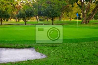 golf grün