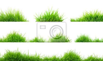 Poster Gras