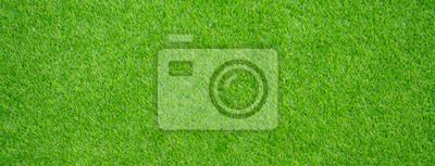 Poster Gras Feld Hintergrund. grünes Gras. grüner Hintergrund