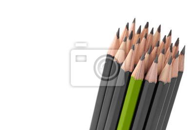 Grau Buntstiften und einem grünen Buntstift auf weißem Hintergrund.
