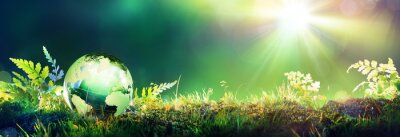 Poster Green Globe Auf Moss - Umwelt-Konzept
