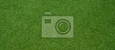 Poster green grass background, football field