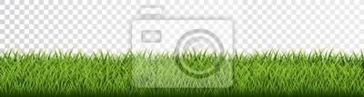 Poster Green grass border set on transparent background. Vector Illustration