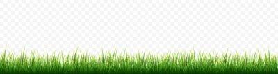 Poster Green grass border set on white background. Vector Illustration