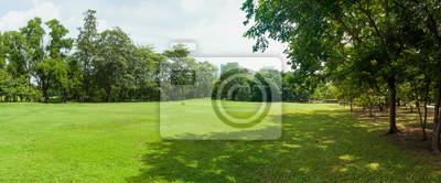 Poster green grass field in big city park