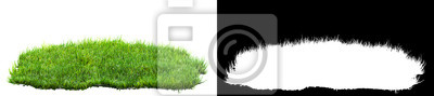 Poster green grass turf isolated on white background with alpha mask for easy isolation 3D illustration