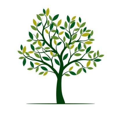Poster Green Spring Tree. Vector Illustration.