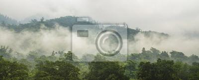 Grünen Wald mit Nebel in den Bergen Panorama
