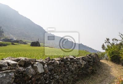 Grünen Wiese und Steinwand in Nepal