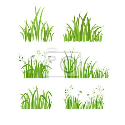 Poster Grünes Gras gesetzt