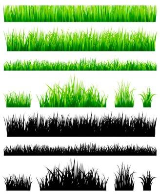 Poster Grünes Gras Sammlung