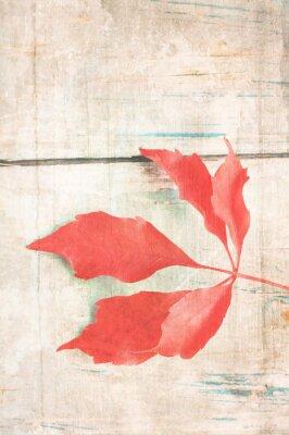 Poster Grungy Hintergrund mit roten Blatt
