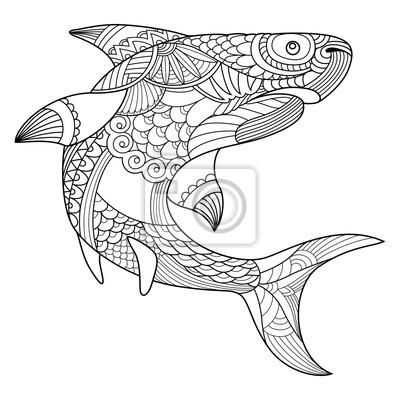 Poster Hai Ausmalbilder Für Erwachsene Vektor