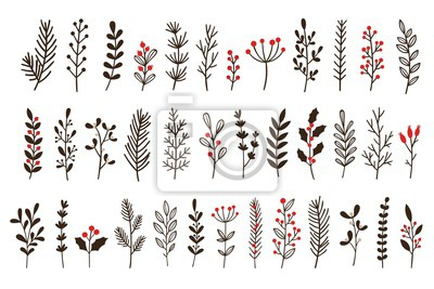 Poster Hand drawn winter leaves and branches. Floral twig, botanical branch with berry and leaf doodle. Plant leaf feather and fir tree branches christmas holiday element. Isolated vector icons set