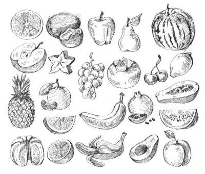 Poster Hand gezeichnet Obst