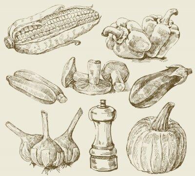 Poster Hand gezeichnet Satz Gemüse