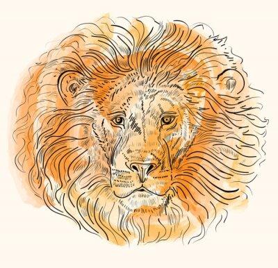 Poster Hand gezeichnet Vektor-Illustration mit Löwenkopf