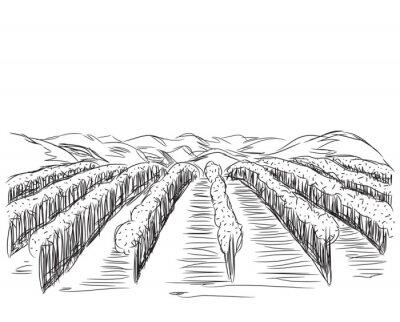 Poster Hand gezeichnete Landschaft mit Feldern.