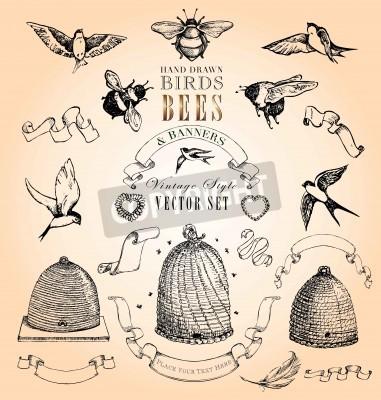 Poster Hand gezeichnete Vögel, Bienen und Banner Vintage Style Vector Set