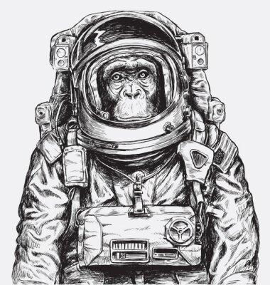 Poster Hand gezeichneter Affe Astronaut Vektor