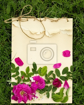 Poster handmade drawing pad with flowers and leaves of wild rose on the background of grass