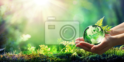 Poster Hands Holding Globe Glass In Green Forest - Environment Concept