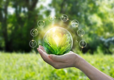 Poster Hands protecting globe of green tree on tropical nature summer background, Ecology and Environment concept
