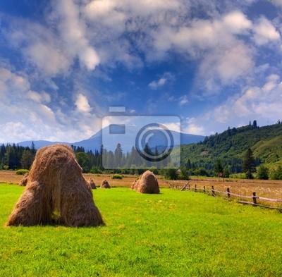 Hay in einem Dorf in den Bergen im Sommer
